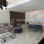 Fully Furnished | Spacious Duplex | No Commission